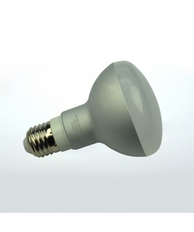 LED30R8027LmNW