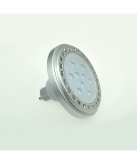 LED9x1A10SNW